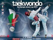 Locandina dell'Olympic Dream Cup 2015