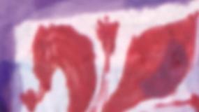 Bandiera della Fiorentina