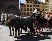 Carrozzella a Firenze in una immagine dal sito intoscana.it