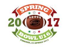 Spring Bowl Under 16