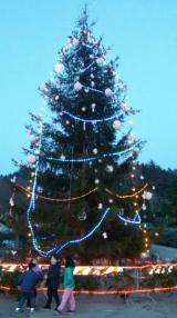 Albero di Natale - Fonte foto proloco