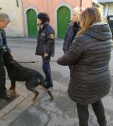 Rottweiler sequestrato a Prato