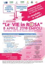 Le Vie in Rosa - locandina