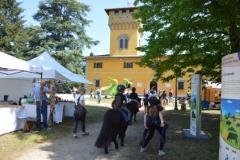 foto attività evento