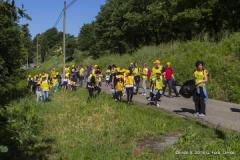 Volontari per 'Puliamo i boschi' a Capraia e Limite