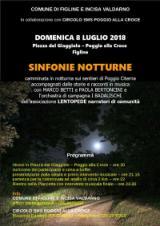 Locandina Sinfonie Notturne
