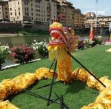 Dragone cinese ai Canottieri