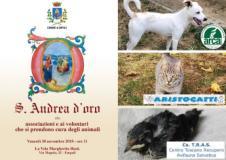 Invito Sant'Andrea d'Oro